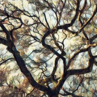 Lot 2 - Abstract Tree