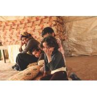 Lot 12 - Bedouin - 8