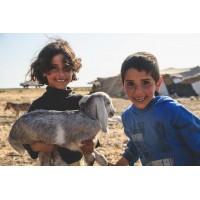 Lot 20 - Bedouin - 10