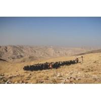 Lot 14 - Bedouin - 13
